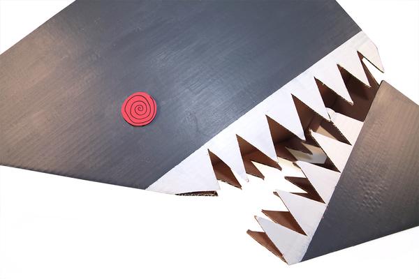 Large img 7404 sharklr