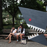 Small img 7372 sharkout2lr