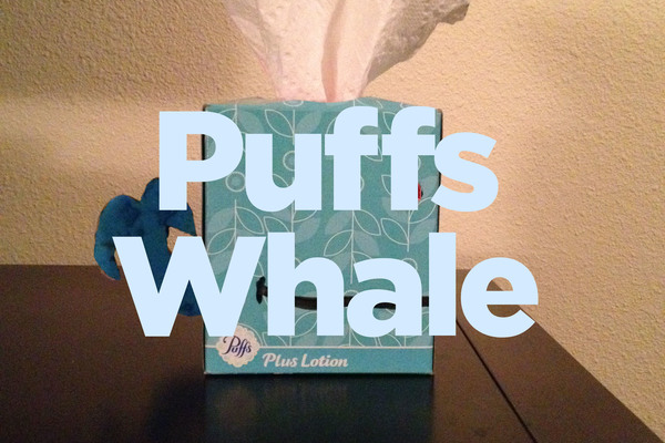 Large filled puffs whale2